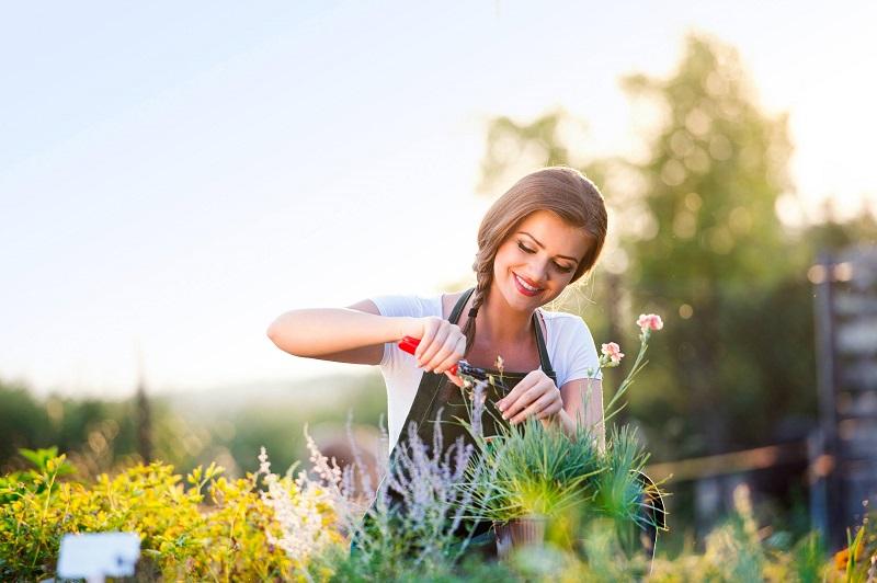 Zahrada a péče